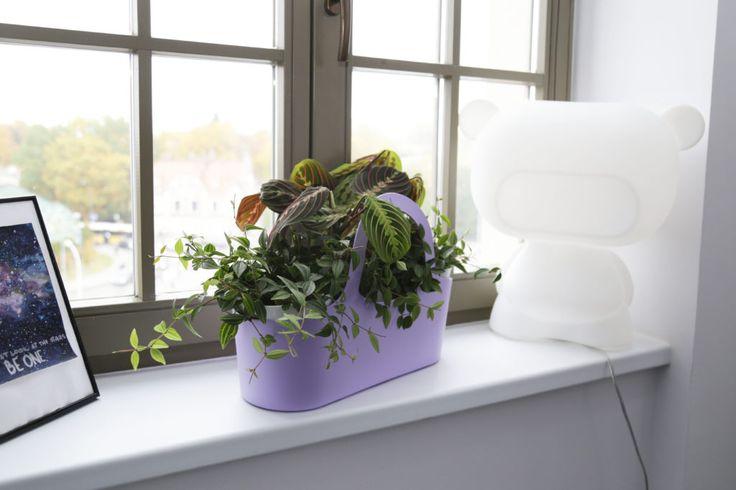Pomysł na prezent: ekotorba w klasycznym stylu | Inspirowani Naturą | design eco bag Tbasket at makeithome.pl