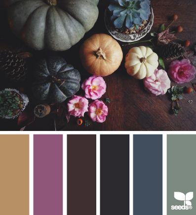 autumn hues | design seeds | Bloglovin'