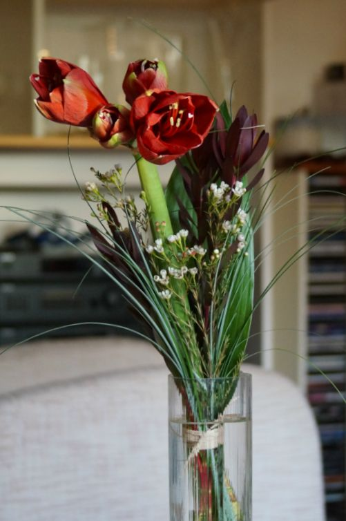 Red amaryllis flowers. #bouquets