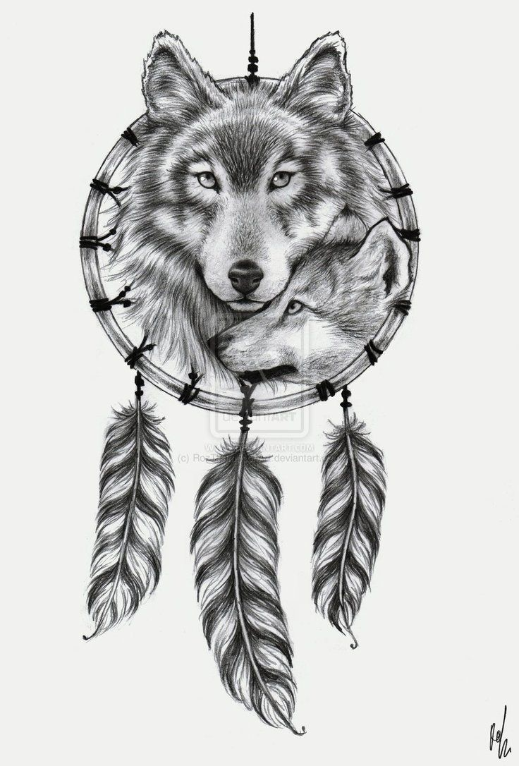 die besten 25 wolf dreamcatcher ideen auf pinterest wolf traumf nger t towierung traumf nger. Black Bedroom Furniture Sets. Home Design Ideas