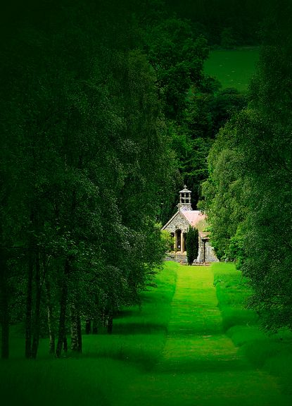Dawyck Royal Botanical Gardens, Scotland.