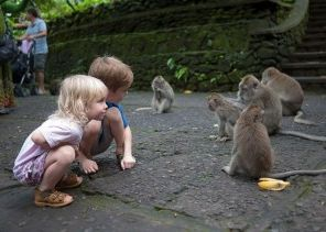 children playing with monkeys in ubud by http://goo.gl/KnoQId