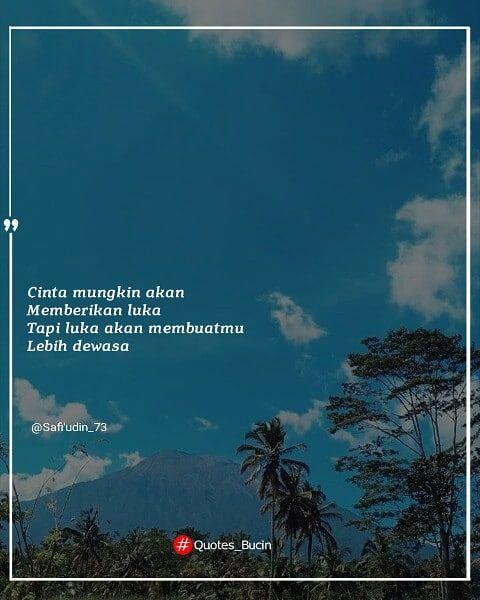 quotes editor typography picsaypro senimankata