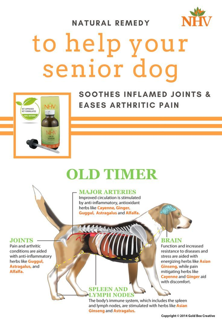 how to help joint pain in dogs