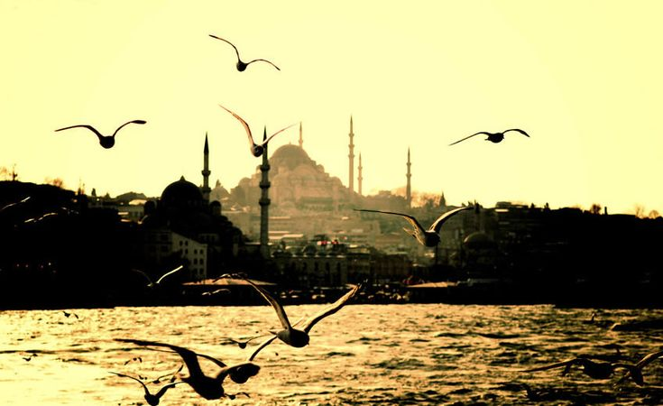 Stunning view from the Bosphorus