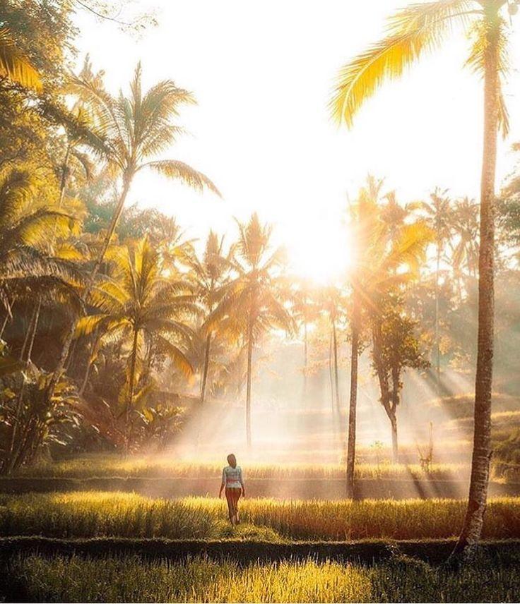 I cosmetici vegetali e i prodotti per la cura del corpo della linea IATITATI sono profondamente ispirati dalla tradizione curativa tailandese. Immergetevi in un trattamento tra i più raffinati al mondo e donate al vostro corpo bellezza ed equilibrio. Tailandia – il cuore dell'Indocina. Natura incontaminata. Una cultura, cresciuta in mille anni di tolleranza e varietà. Dove la scienza Cinese, Indiana ed Occidentale incontrano una saggezza indigena. Dove le terapie Ayurveda e Yoga si uniscono…