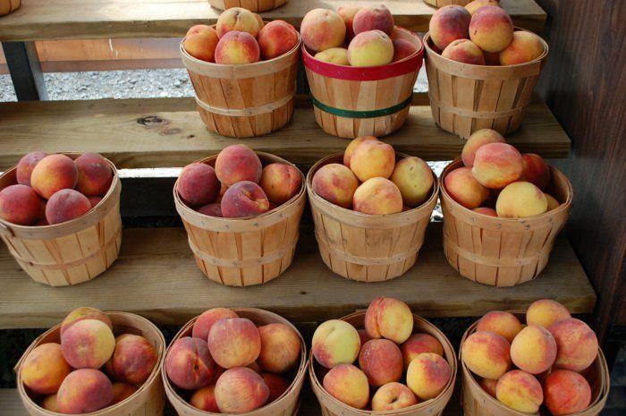 kalorein pfirsich pfirsich gesund lebe gesund