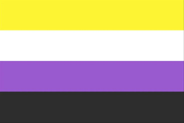 The best gay, bisexual, pansexual and other LGBT flags. The rainbow flag has been part of LGBT community for over 4 decades! Shop LGBT Flags now! Nonbinary Flag, Gender Neutral Pronouns, Lgbtq Flags, Non Binary People, Gender Binary, Genderqueer, Lgbt Community, Gay Pride, Transgender