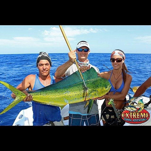 58 best images about captain jimmy nelson team salt life for Fishing with luiza