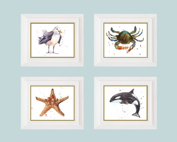 Adventurous cape cod collection set of 4 prints nautical for Beach house prints