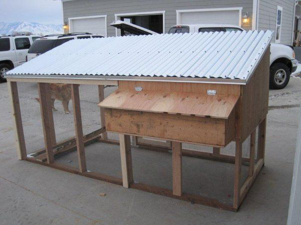 simple chicken coops for 10 chickens - Google Search