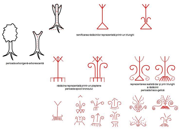 Pomul vieţii - evoluţia de la perioada arborigenă-arborescentă la epoca bronzului