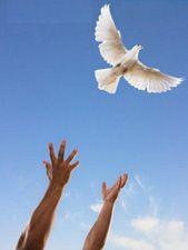 The Law of Detachment | The Chopra Center