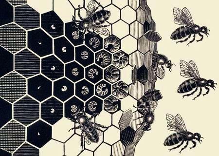 Mc escher metamorphosis detail m s escher pinterest for Escher metamorfosi
