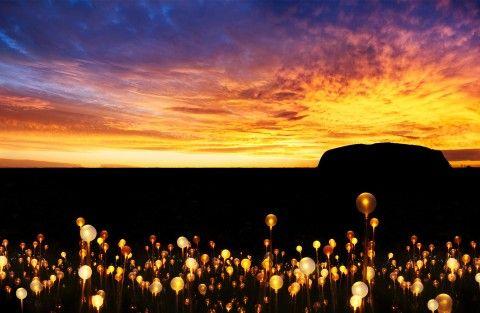Glowing 'Field Of Light' Art Installation Will Illuminate UluruAWOL