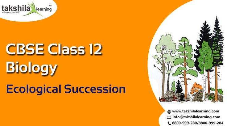 Online CBSE Biology Class 12 Ecological Succession, Biology Class 12,Biology notes for class 12,class 12th science