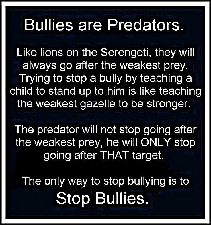 Stop enabling bad behavior! Bullies Pinterest Enabling