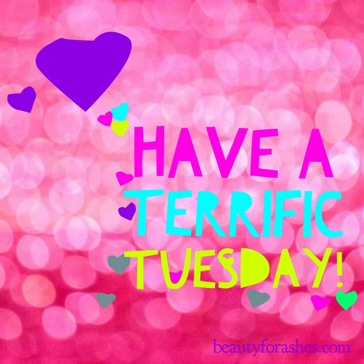 #Tuesday                                                       …