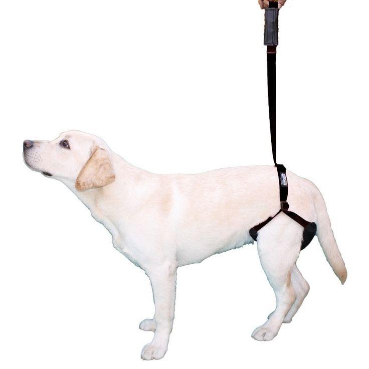Arnés perro para soporte patas traseras - ¡Es el arnéspara perros discapacitados más vendido!  La ayuda ideal para perros conartrosis de cadera,displasia de caderaoproblemas neurológicos.  Da seguridad, estabilidad y soporte a perros con problemas de movilidad tanto en las patas traseras como delanteras.