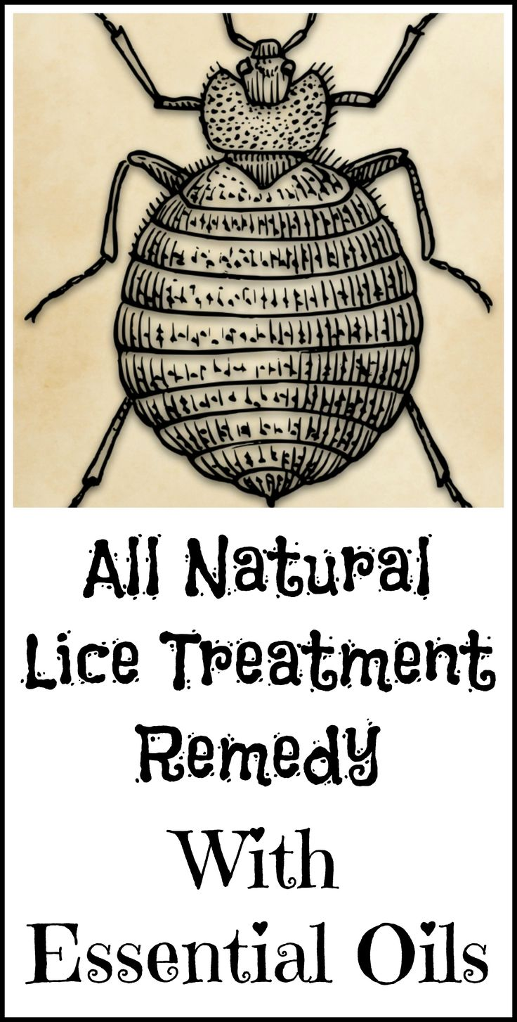 DIY all natural non-toxic lice treatment recipe with essential oils.