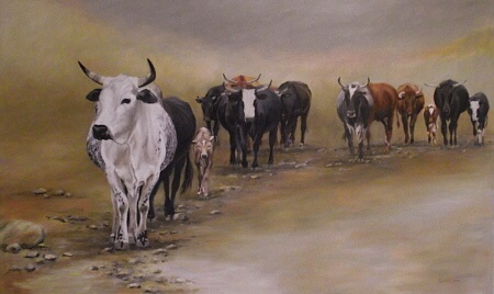 """""""Herd Going Home"""" by Erna Wade.  Original Oil on Stretched Canvas.  1500 x 900 x 15mm (59x35""""). $1400.00    SOLD"""