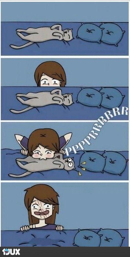 Mi gato.- ¡QUIERO JUGAR SOLO!   – Kunst