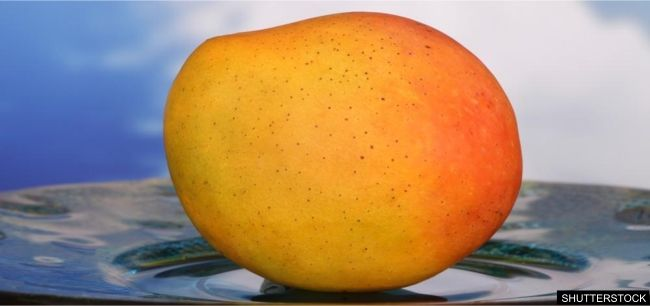 A recent study showed that of more significance is the marked improvement in multiple measures of overall health. Findings show that in volunteers supplementing with the super fruit extract, their bad LDL cholesterol, triglyceride, and glucose levels all plummeted — unlike many diet pills on the market, African Mango actually improves your health while promoting safe weight loss.