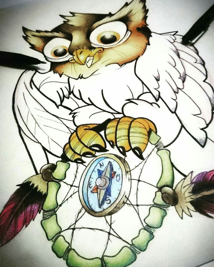 Owl drawing!! Pencil and colors pencils New school and neotraditional