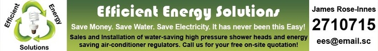 Newspaper Advert Design for Efficient Energy Solutions