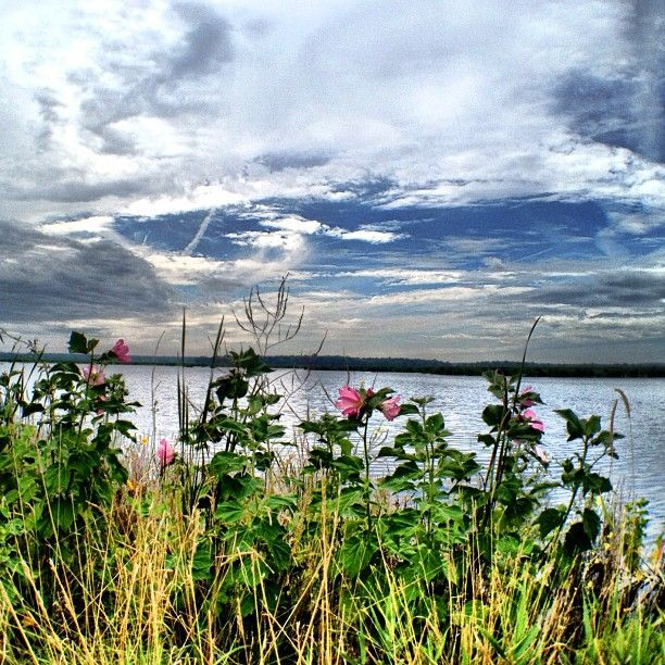 77 Best Images About Finger Lakes On Pinterest