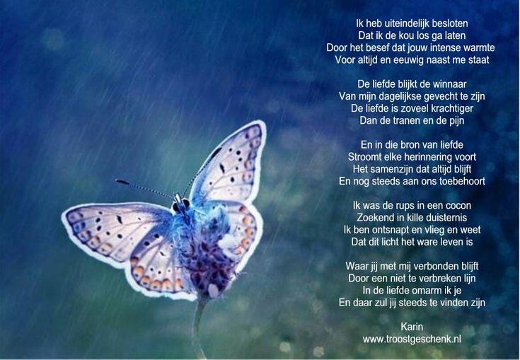 Afbeeldingsresultaat voor vlinder rouw
