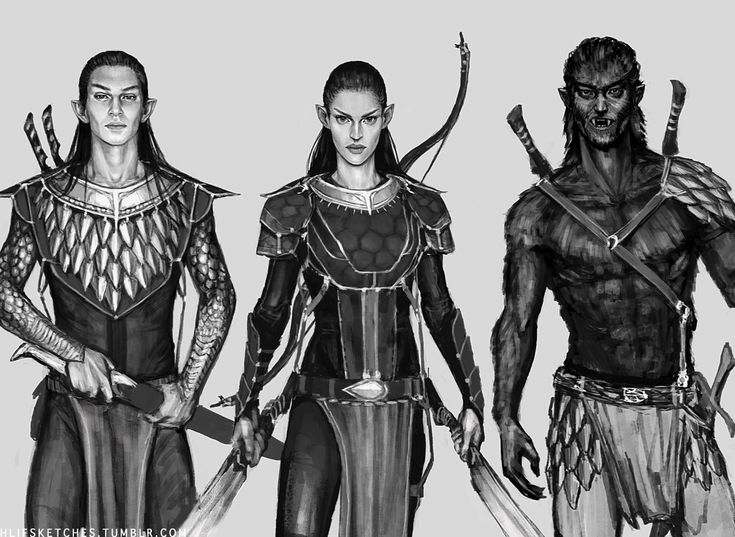 Wyrden, Arya and Blödhgarm, from the Inheritance Cycle (Eragon). I started and never finished it winter 2011-2012. It will probably never be colored.
