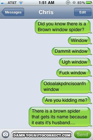Window spider: | The 30 Most Hilarious Autocorrect Struggles Ever