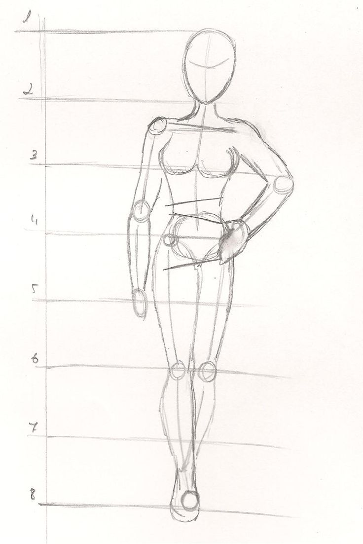 Схема человека в карандаше картинки