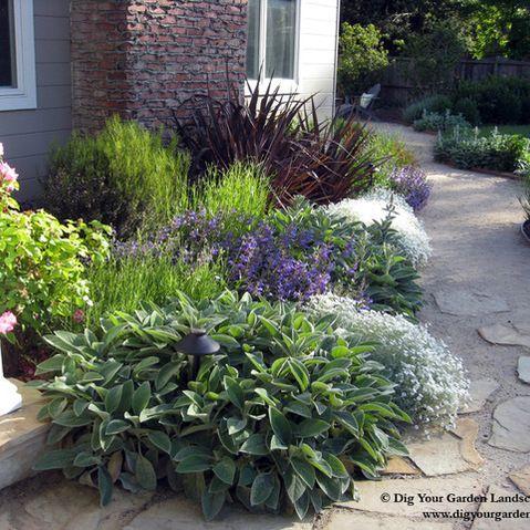 Best 25 california garden ideas on pinterest drought for Foundation planting plans