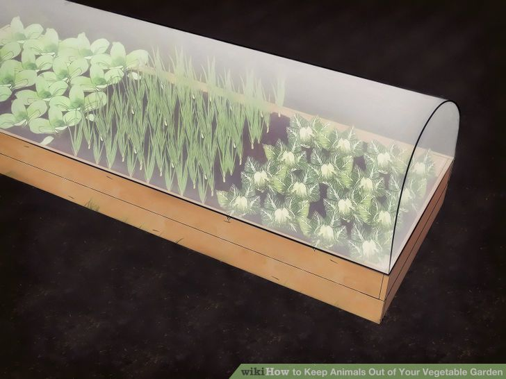 image titled keep animals out of your vegetable garden step 3 - Garden Ideas To Keep Animals Out