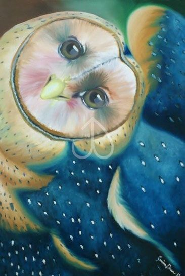 "Barn Owl, Oil painting, 20""x30"""