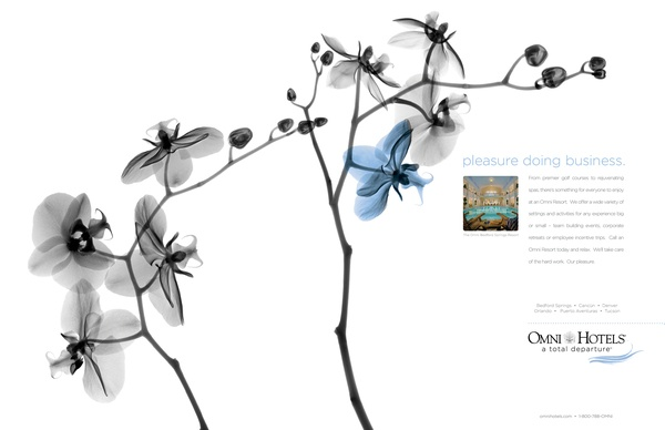 Omni Hotels Print Campaign on Behance