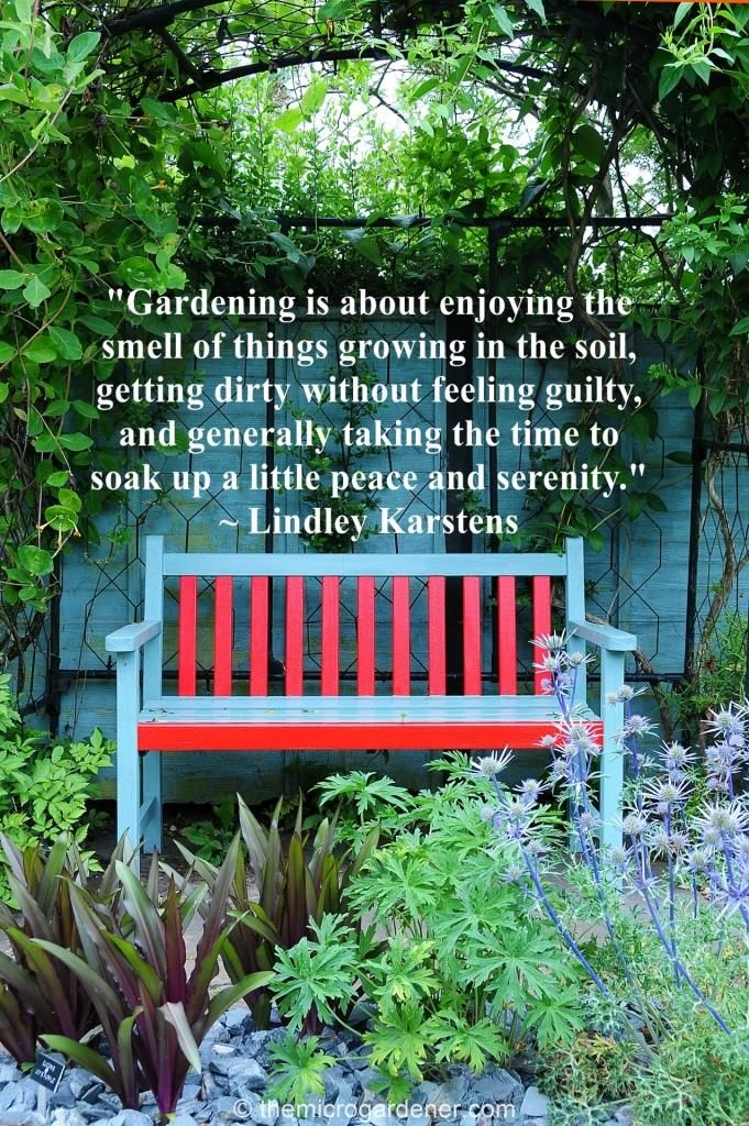 """Gardening is about enjoying the smell of things growing in the soil, getting dirty without feeling guilty, and generally taking the time to soak up a little peace and serenity."" Download more #garden #quotes @ https://themicrogardener.com/inspiring-quotes-garden-nature 