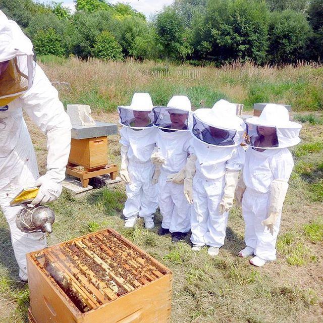 Abrimos inscripciones para una de nuestras actividades familiares más especiales: ¡Apicultores por un día! Una experiencia única (y segura) donde conocer de cerca el increíble mundo de las abejas. Veremos cómo funciona una colmena, cómo viven las abejas y cómo se extrae la miel. Hace falta un poquito de calor para que las abejas salgan de su letargo, así que será desde finales de marzo, ¡pero las plazas vuelan literalmente! Si no quieres quedarte sin la tuya te recomendamos reservar ya! Es…