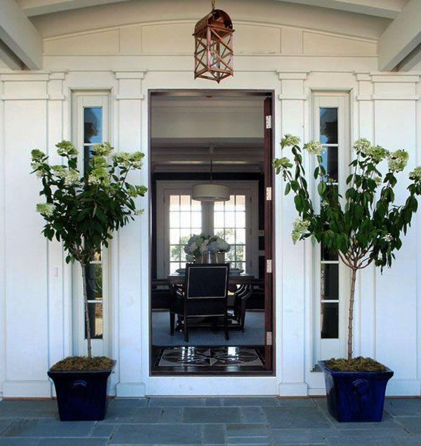 Best Front Door Ideas Images On Pinterest Door Ideas Doors