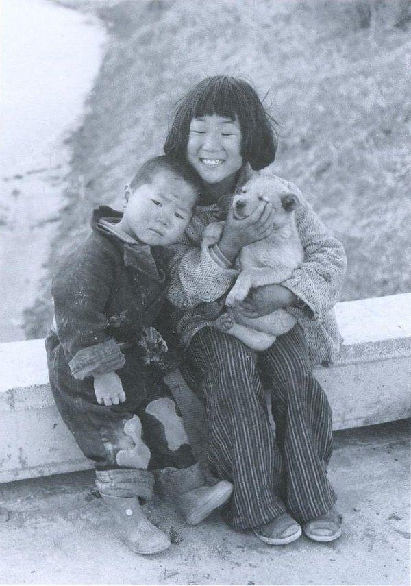 昭和25年頃(1950)名古屋の姉弟と犬。戦前~戦後のレトロ写真(@oldpicture1900)さん | Twitter