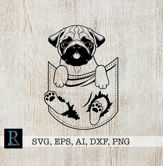 Commercial use Pug clip art PNG digital vector clipart. DXF Cute Pug cut files Funny puppy pug Pug svg baby dog SVG eps