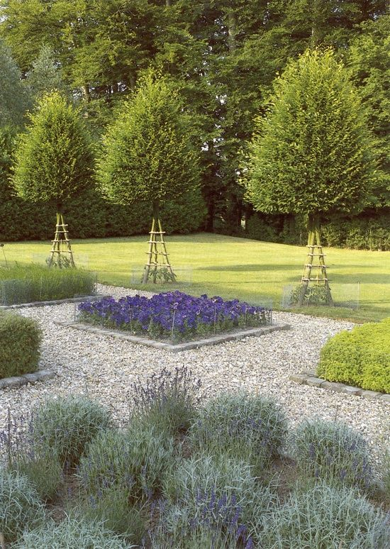 17 best images about backyard front yard landscaping for Evergreen landscapes christchurch