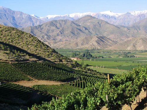 Zonin to introduce new Chile project at Vinexpo  https://www.thedrinksbusiness.com/2017/06/zonin-to-introduce-new-chile-project-at-vinexpo/