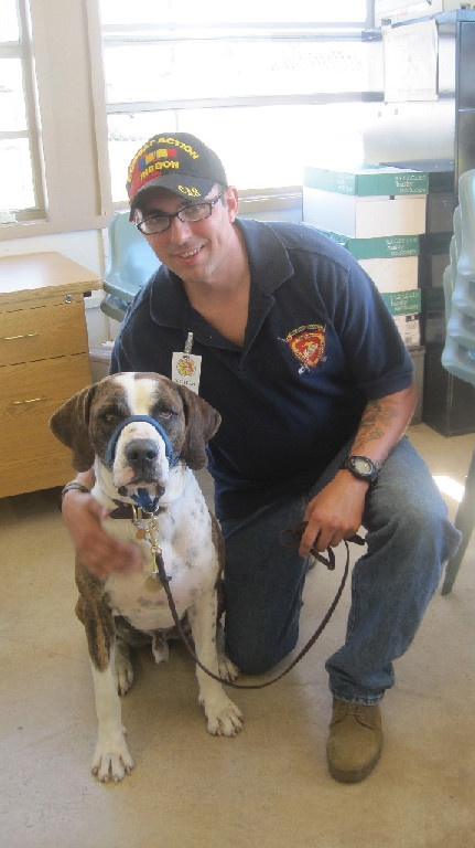Service Dogs For Disabled Veterans Act