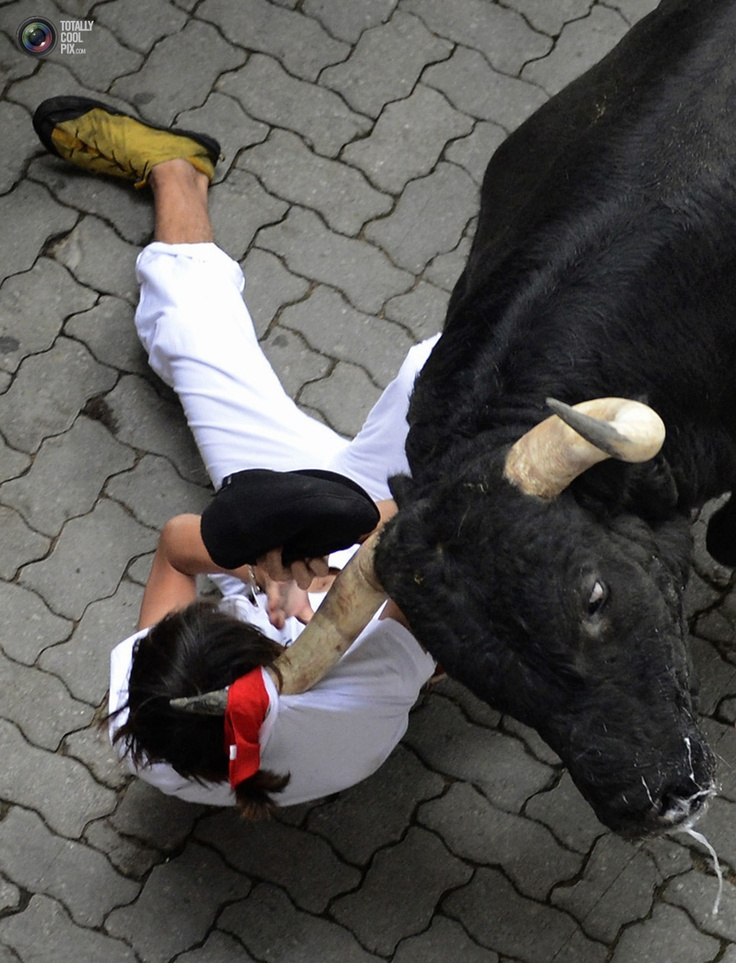 A runner is dragged by his scarf by a Dolores Aguirre fighting bull at the entrance to the bullring during the first running of the bulls of the San Fermin festival in Pamplona.