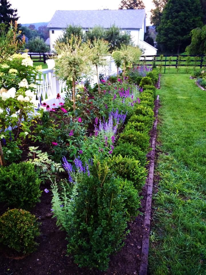 17 Best Images About Garden Borders On Pinterest