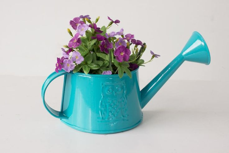 Watering Can Hanging Indoor Planter