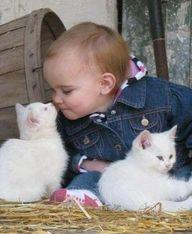 Love is love.Animal Baby, Baby Kittens, Baby Boys, Baby Animal, Baby Girls, Kids, New Friends, White Kittens, Baby Cat